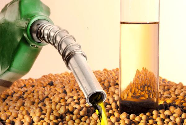 biodiesel soja